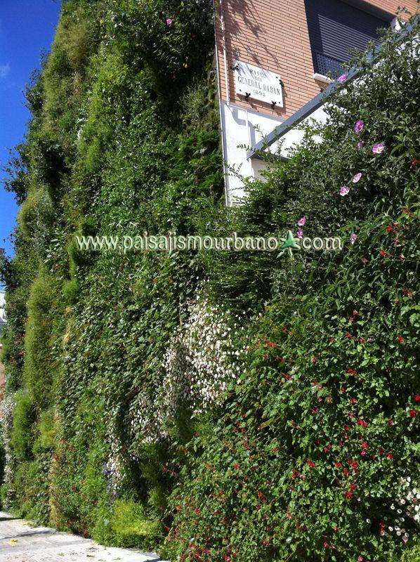 Mejores 8 im genes de jardin vertical paterna en for Jardines verticales construccion