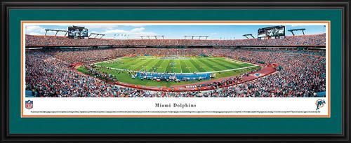 Miami Dolphins Panoramic Picture Deluxe Matted Frame