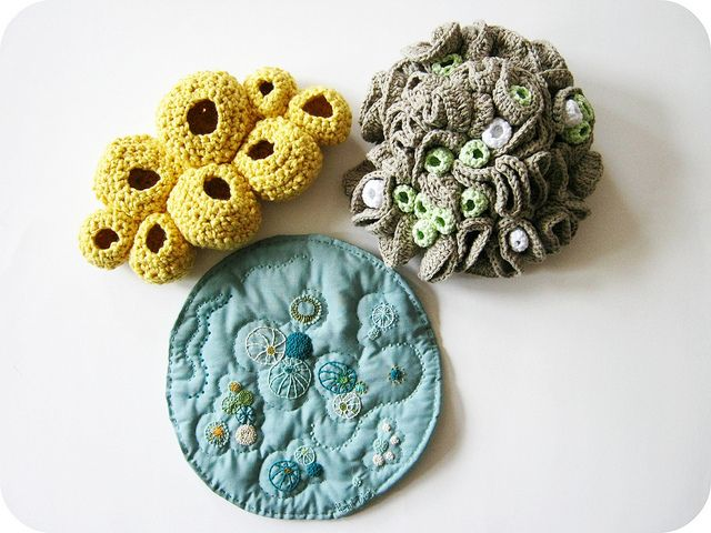Crocheted and embroidered seaforms. Fiber arts by cornflowerbluestudio, via Flickr.