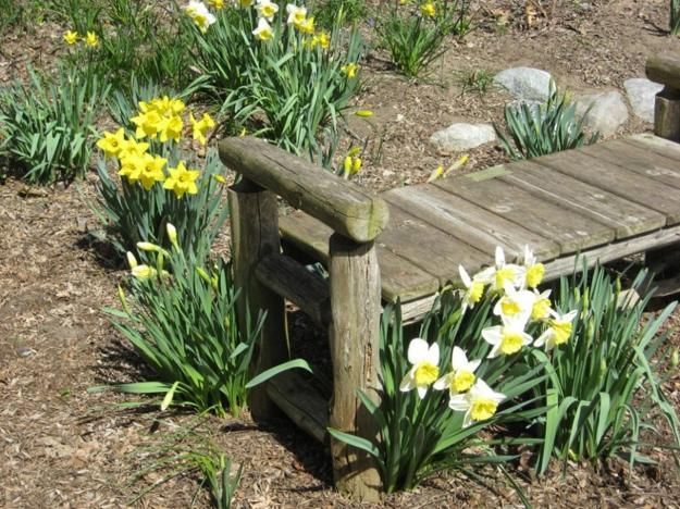 Country Style Backyard Ideas : 1000+ images about For the Home on Pinterest  Hay feeder, Chicken