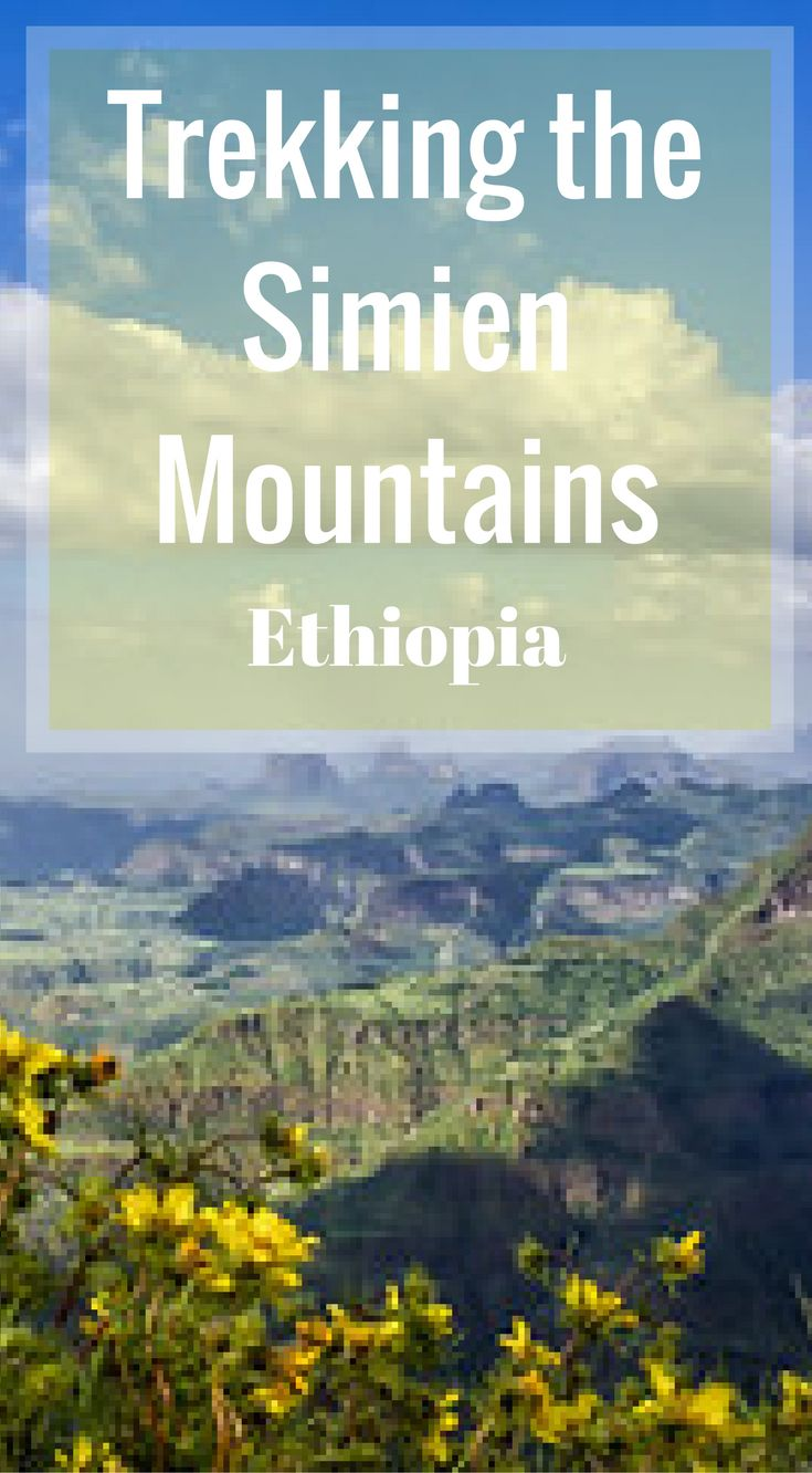 Trekking the Simien Mountains in Ethiopia. With its jaw dropping views of wild landscapes and wild flowers to its rare wildlife containing Gelada Baboons, Wallia Ibex and Ethiopian Wolves, the Simien Mountains is a rarely visited wonderland of nature. Click to read more at http://www.divergenttravelers.com/hiking-simien-mountains-ethiopia/
