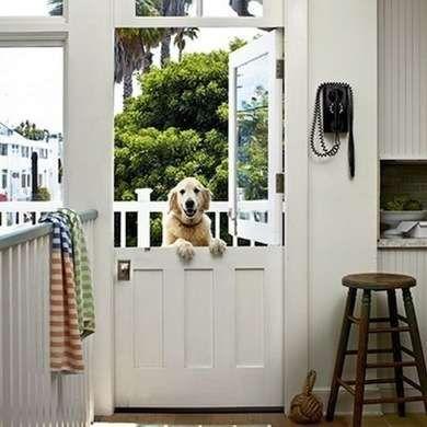 Dog at a Dutch Door