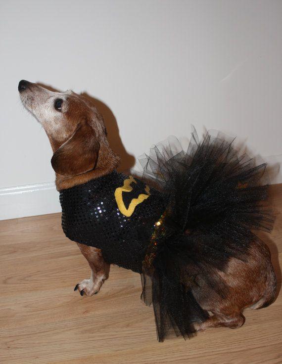 Dog / Dachshund Super Hero Bat Girl Costume. Comes by MyDoggieDuds, $30.00