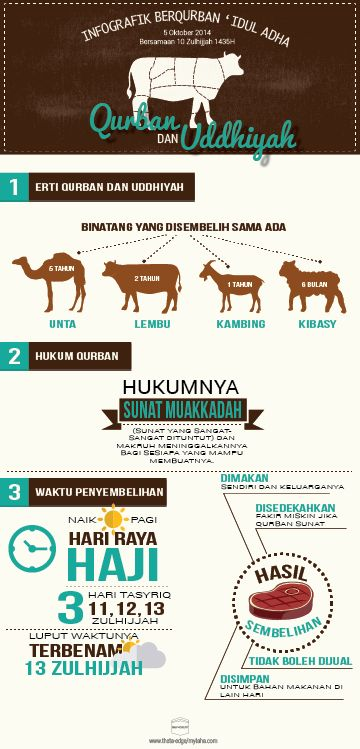 Hari Raya Qurban Infografik on Behance