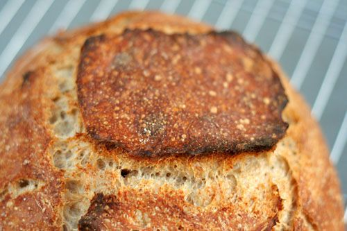 Tartine Country Bread--made using only wild yeast!