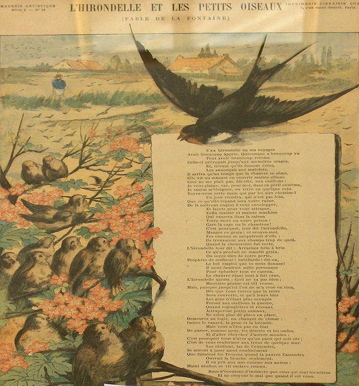 Les oiseaux de La Fontaine - L'hirondelle et les petits oiseaux