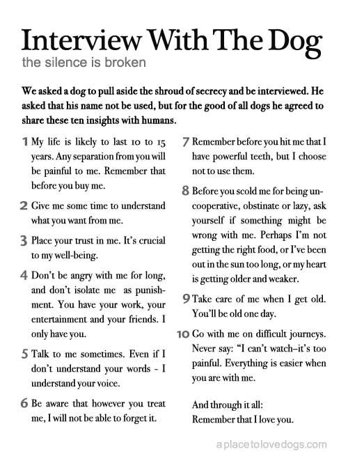 Every person who owns a pet should read this daily. Made me cry.