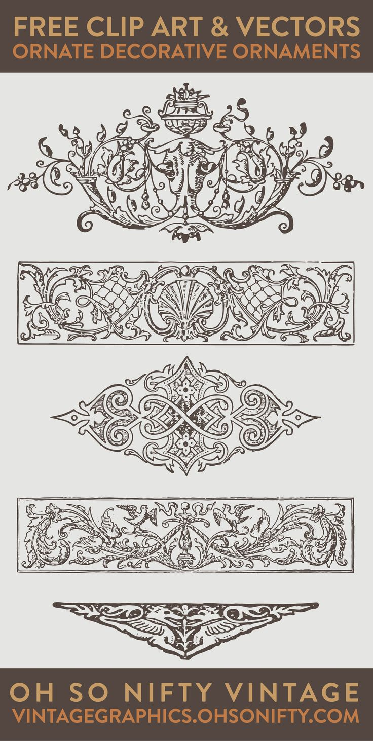 I know you're ready for another amazing set of stock vector illustrations. These are so pretty. I love the French Rococo shell ornament design! You'll love working with these, because they are super huge and high resolution.
