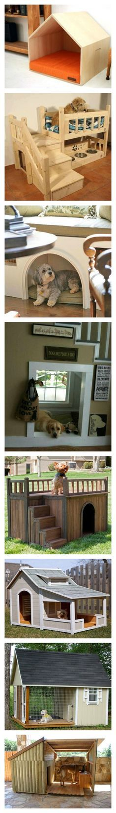 Amazing dog houses * Indoor and outdoor