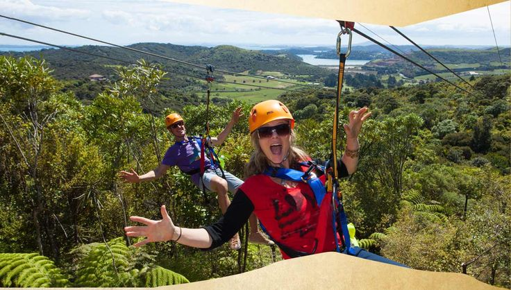 EcoZip | Flying fox attraction and zipline tour in Auckland