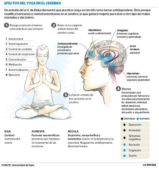 Científicos estadounidenses comprueban que practicar yoga mejora salud mental. Expertos revisaron 100 estudios que muestran los cambios que provoca en hormonas y neurotransmisores del cerebro.