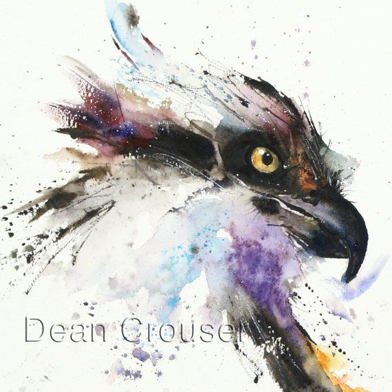 OSPREY Watercolor Print by Dean Crouser by DeanCrouserArt on Etsy, $45.00