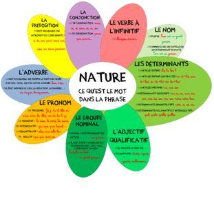 Nature et fonction d'un mot