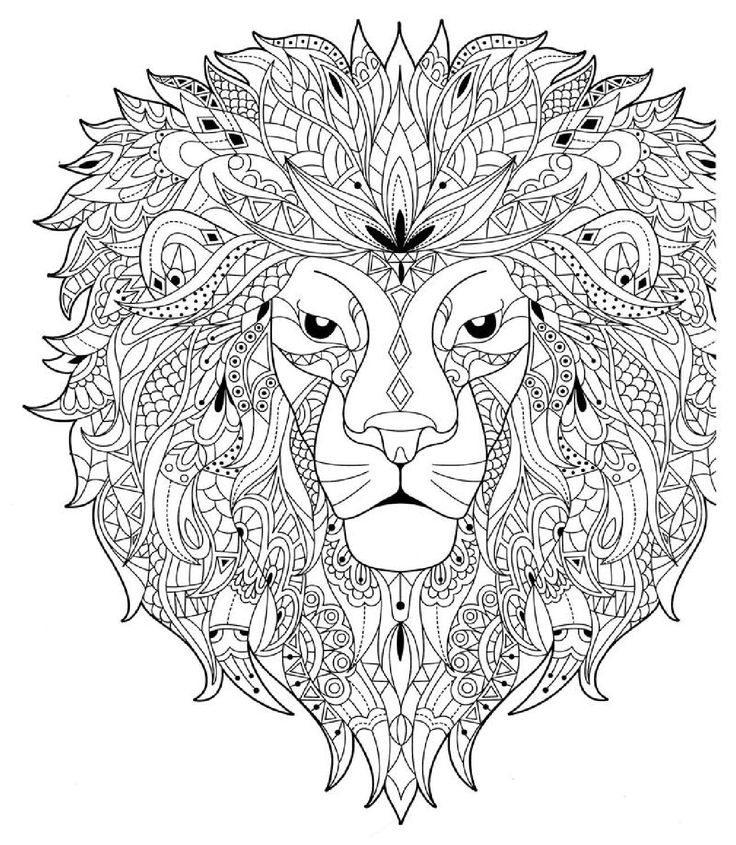 Nn749 m t ng y p tr i park young mi anti stress for Lion mandala coloring pages