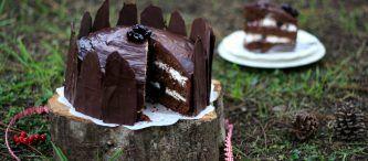 La Ciambella al cacao con cuore di cocco è una torta semplice, soffice e golosa al cacao con un ripieno dicocco che resta morbido anche dopo la cottura. Squisita a colazione o a merenda, risulta tra le preferite dai bambini ed è anche bella da vedere una volta tagliata, con il suo interno cremoso e bianco. Se come me amate le ciambelle, le torte da colazione e le coccole, preparate e preparatevi questa profumata bontà! Conquisterete i vostri ospiti con il binomio cacao - cocco, un binomio a…