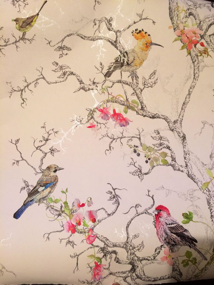 Birds Wallpaper (B&Q) Lounge? | Projects to Try | B&q wallpaper, Bird wallpaper, Wallpaper