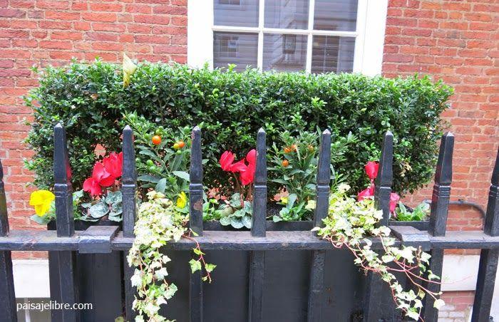 Mejores 34 im genes de jardineras en pinterest - Plantas jardineras exterior ...