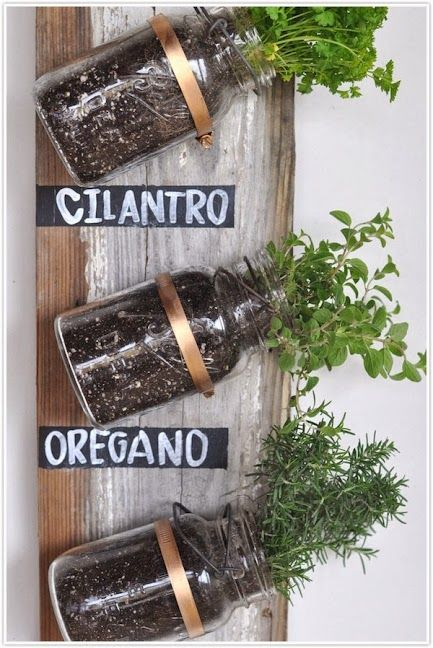 A MASON JAR HERB GARDEN. Perfect for small spaces or apartments. I love healthy DIY projects. @mslanthier