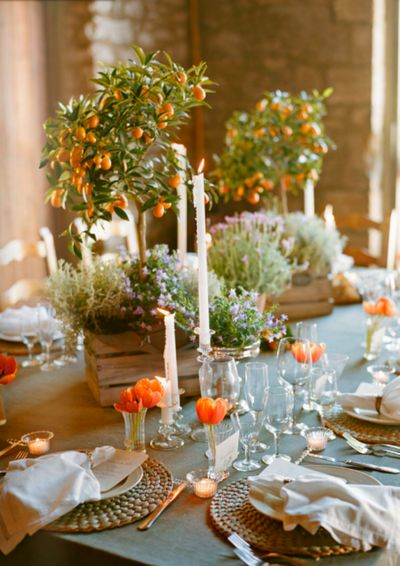 So cute ! Citrus Tree table styling .