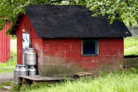 Old Milk House Milk House Amish Ohio Milk Cans Amish