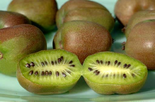 Kiwi Seeds ★ PASSION POPPERS★ Great Houseplant Too ★ GMO FREE ★ 25 Seeds ★