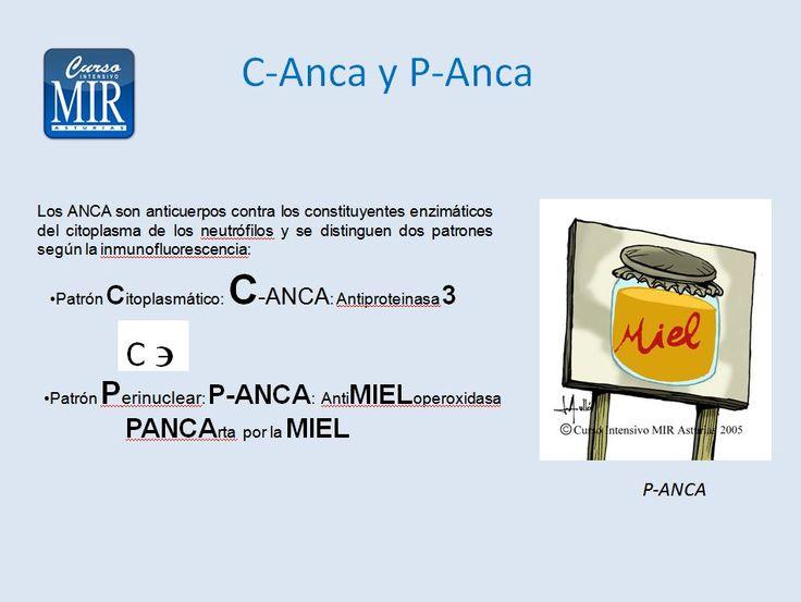 C-Anca y P-Anca - #Reumatología