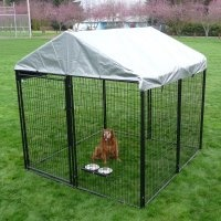 AKC 10 x 10 x 6 ft. Pro-Breeder Dog Kennel with Cover