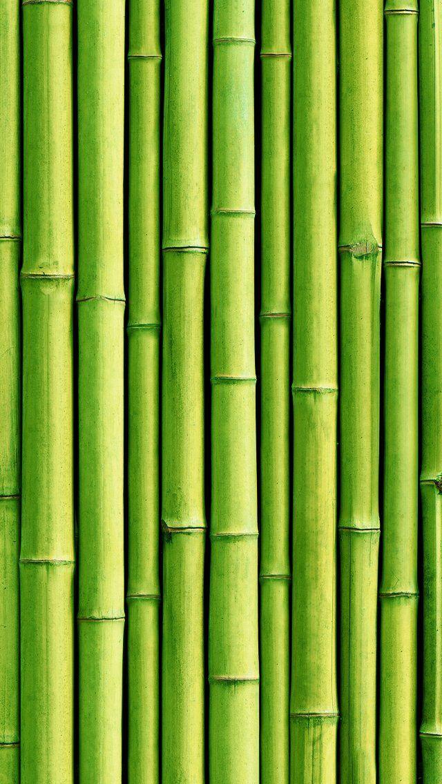 Lt Green Bamboo Green Wallpaper Bamboo Wallpaper Green Aesthetic