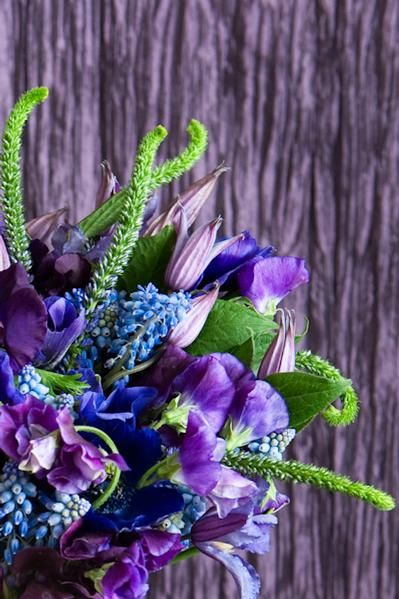 Bridesmaids' bouquet but smaller: purple and lavender Sweet Peas, Purple Anemones, Muscari, Blue Clematis,  and Veronica!