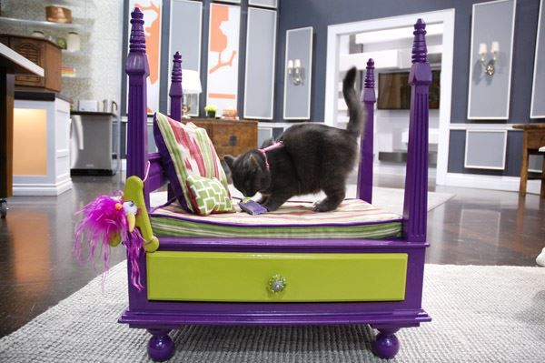 Steven creates inexpensive pet beds inspired by those found in many retail shops.Four Post Pet BedHere Steven used a recycled table and transformed it into a glamorous four-poster bed suitable for any small pet. Supplies4 legged side tableMelamine paintFence finialsSmall...