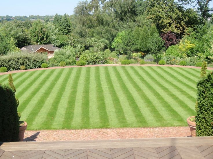 Want To Make Your Yard Or Lawn Beautiful But Donu0027t Know Then Taproot Lawn  Care Are There To Help You In Making Your Garden Attractive And Pleasing.