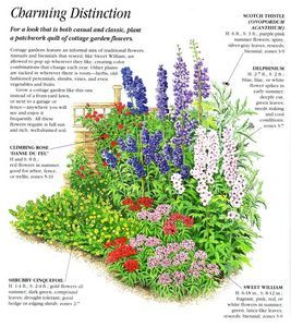 An Example of An English Cottage Garden