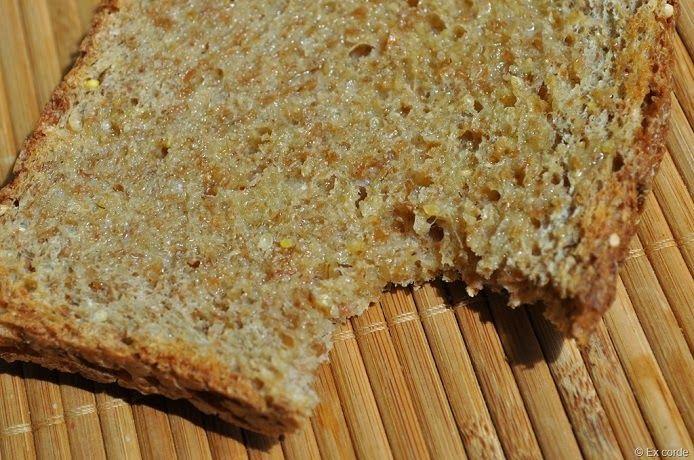 Receita de pão de grãos germinados | Cura pela Natureza.com.br DEVE SER BOM