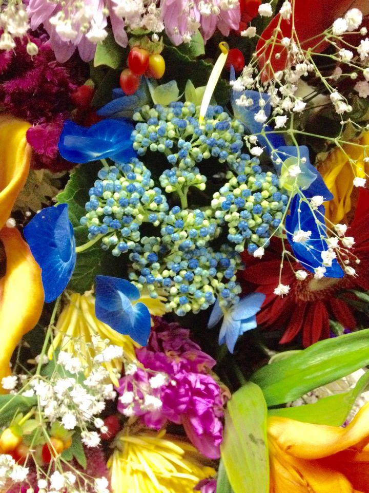 Flores y silletas Medellin