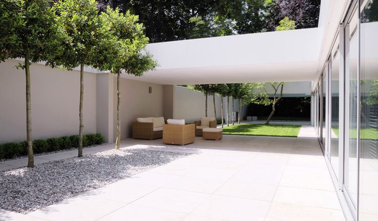 """contemporary minimal low maintenance garden with """"lollipop"""" trees (could anyone suggest a suitable similar tree for clay soil in the Uk please?) Modern Low House by Architect Max Brunner"""