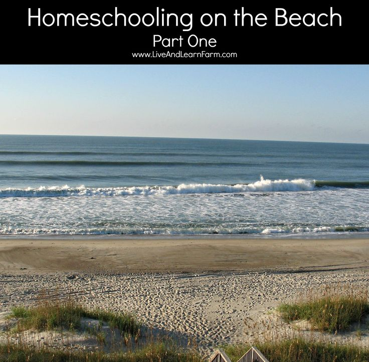 Homeschooling on the beach! Here are a few lessons to introduce before you head to the beach and a homeschool packing list of what to take.  Our homeschool trip to the beach was the BEST vacation ever!  See some of the things we did to make it such a huge success!  ~Trish