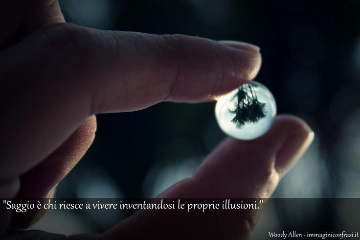 Frase di Woody Allen - Saggio è chi riesce a vivere inventandosi le proprie illusioni..