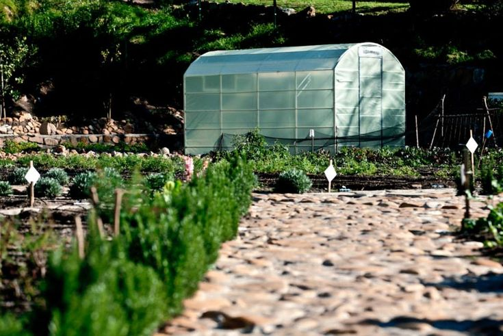 The greenhouse at OZCF in Cape Town is nestled under Table Mountain and happily growing little plants. http://urbanfreedom.co.za/2013/08/ozcf-installation-greenhouse-envy/