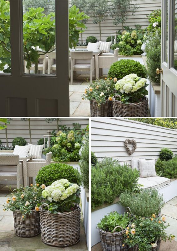 hydrangea in wicker planters- beautiful pure classic flower. Tonal colours and a range of textures: