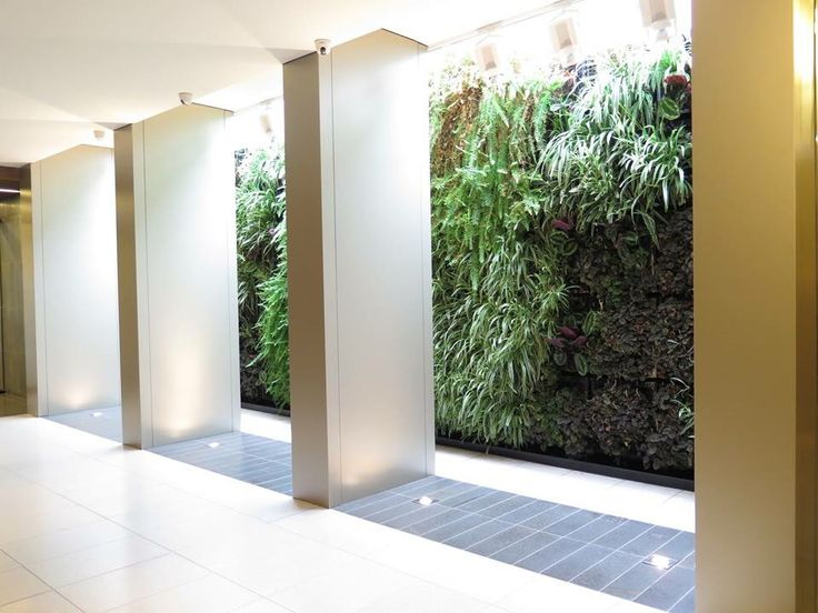 Landworks Landscaping Pty Ltd - Vertical Green Wall in Cirque Apartments Richmond