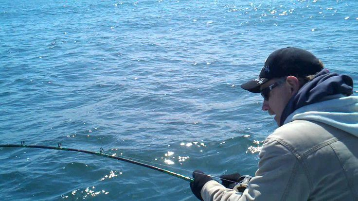 31 best images about charleston oregon on pinterest for Coos bay fishing charters