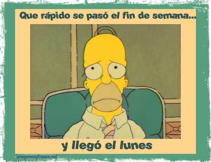 Imagenes Chistosas Homero Triste Porque Es Lunes Imagenes Para ...