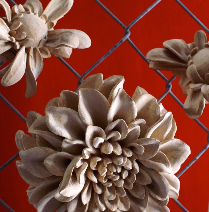 ADAM THORPE Head 1 and Wilted Series 1 (detail), 2015, Carved basswood, chain-link fence, sizes vary Velvet da Vinci