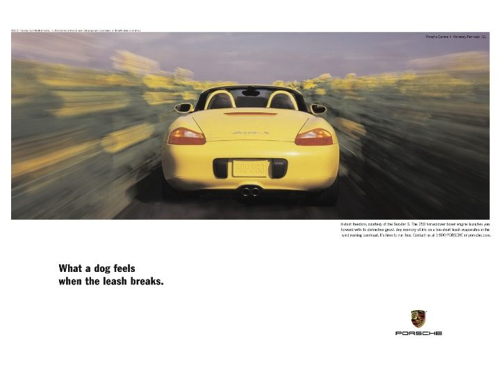 What a dog feels when the leash breaks. - Porsche