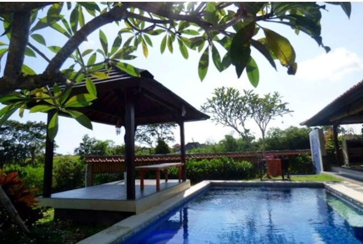 1BR GardenStudio with pool to share - Villas for Rent in Canggu, Bali, Indonesia