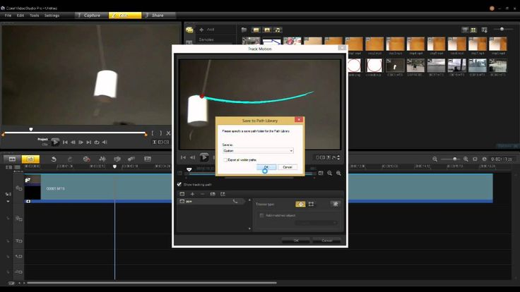 Turning Natural Motion Into Object Animation in VideoStudio Pro X6