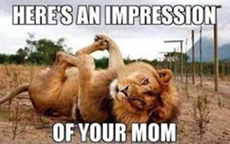 Best Your Mom Jokes | List of the Funniest Mom Jokes