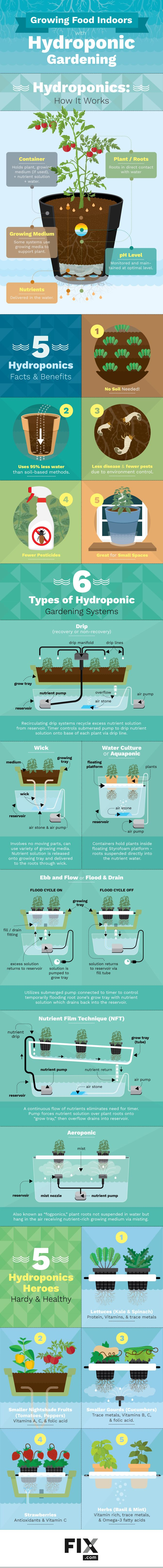 Growing plants in nutrient-rich water, instead of soil, is known as hydroponic gardening. Learn why this form of agriculture is beneficial and learn about some of the different hydroponic systems you can use.