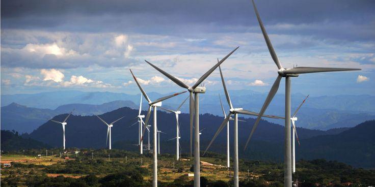 Bis 2017 wird Google seinen Energiebedarf zu 100 Prozent über Wind- und Solarenergie decken.