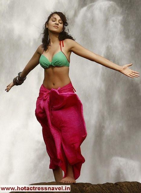 Www Hotactressnavel In, Kothari Navel, Navel Saree, Actresses Navel ...